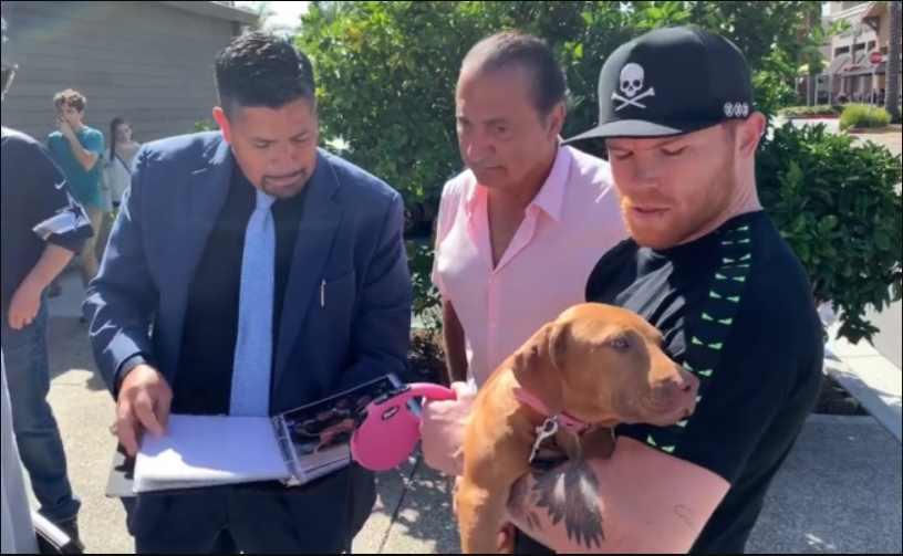 """""""Canelo"""" Álvarez recibe de regalo un cachorro pit bull terrier con valor aproximado de 3 millones de pesos"""