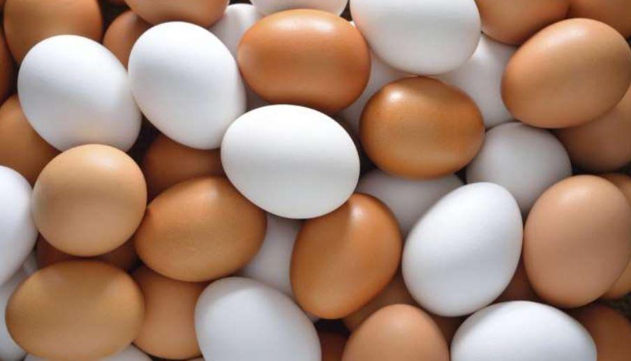 Aumento de huevo y otros productos por comportamiento del dólar