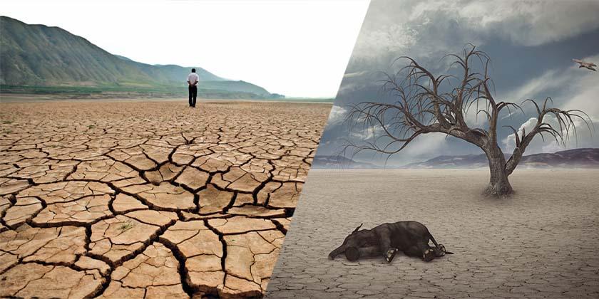 La tierra se sigue calentando, 2019 se registraron más sequías; y el futuro es desolador