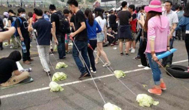 ¿Te sientes triste? Según algunos chinos, pasear lechugas podría ayudarte