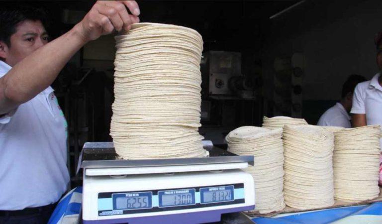 Profeco: no hay justificación para aumentar el precio de la tortilla