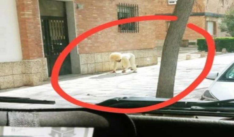Hombre se disfraza de perro para salir a la calle durante cuarentena