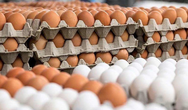 Vende huevo hasta 80 pesos por cono en Oaxaca