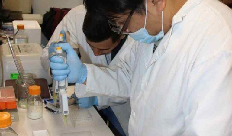 IPN desarrolla medicamento que se podrá utilizar como auxiliar en el tratamiento contra el Covid-19