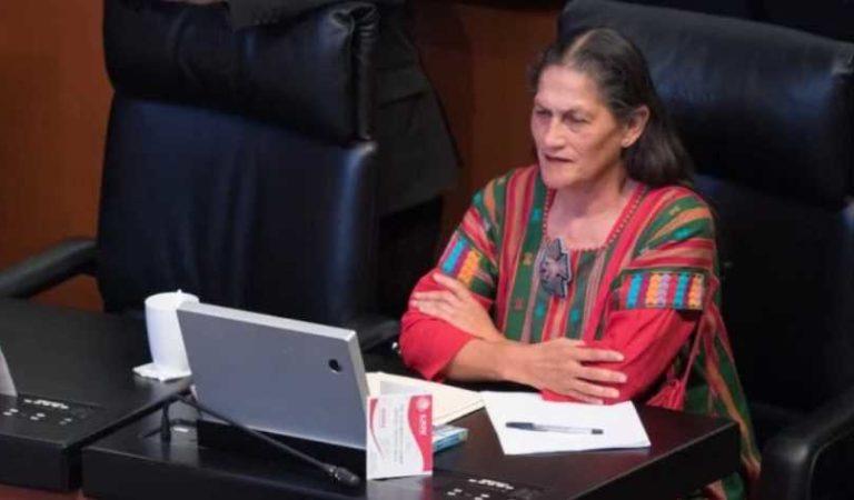 '¿A quién le importaría espiar al PAN? Debe ser muy aburrido': Senadora de Morena