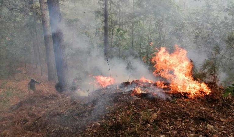 Semar y Sedena combaten incendios forestales en seis estados del país