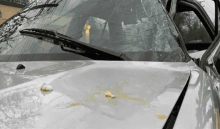 Arrojan huevos a vehículo de agente del MP, pierde control, choca y muere
