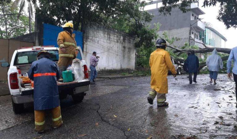 Inundaciones y evacuaciones por tormenta Cristobal en el sureste; cinco estados en alerta