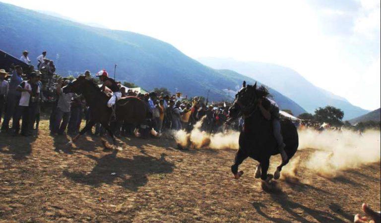 Carrera de caballos termina con balacera en Hidalgo; 5 muertos y 2 heridos | VIDEO