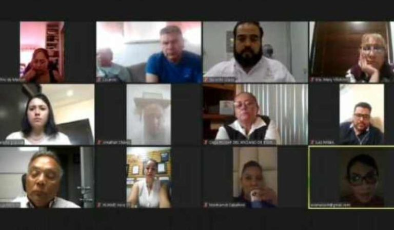 Captan a diputada tomando cerveza durante reunión virtual: genera todo tipo de reacciones | VIDEO