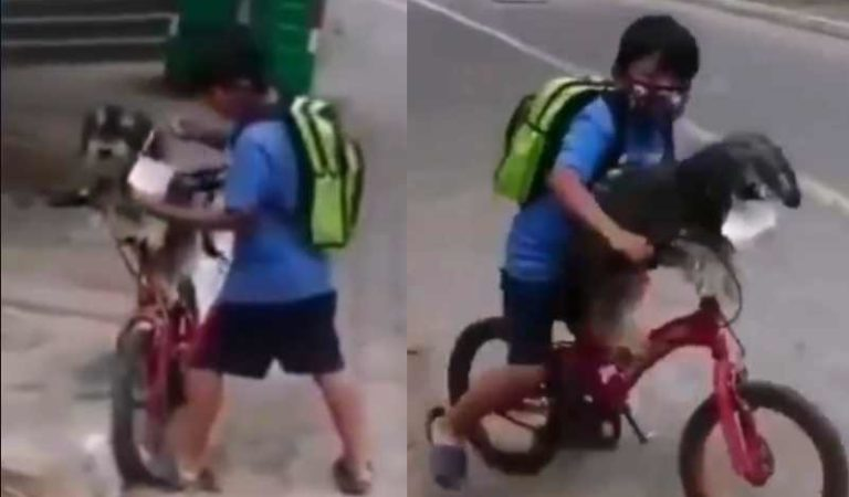 Niño se vuelve viral por proteger a su perrito con cubrebocas mientras van a la tienda | VIDEO