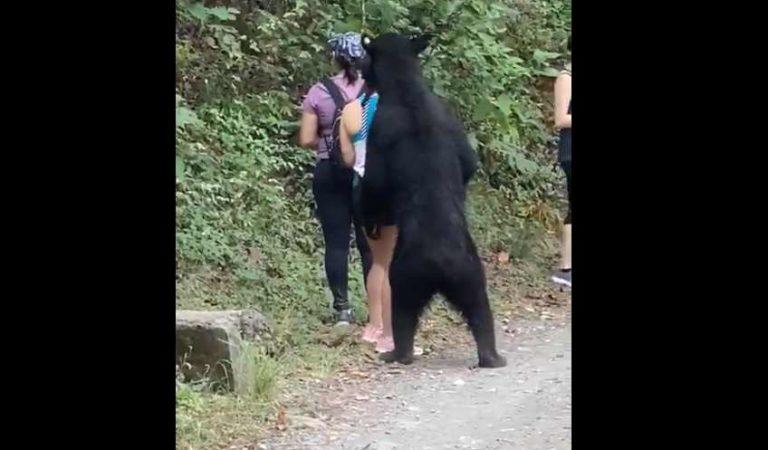 Video de oso acercándose a mujer en parque ecológico de NL se viraliza