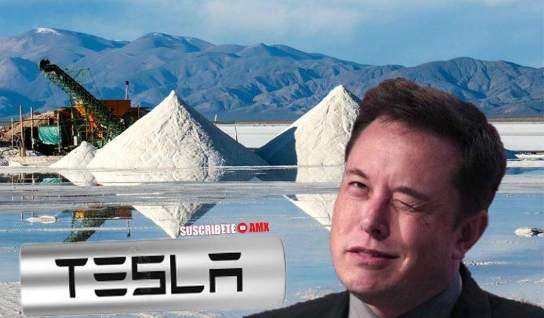 Empresa inglesa ya comprometió 50% de litio mexicano a Tesla de Elon Musk