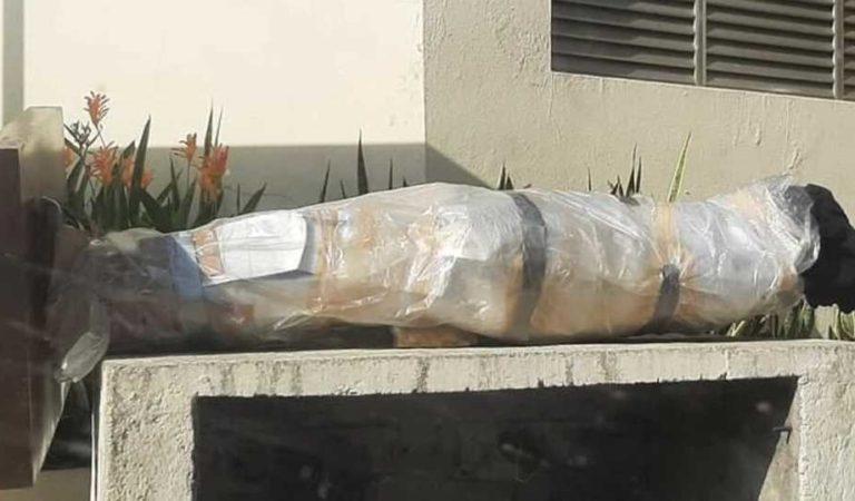 Quitan estatúa de Eugenio Derbez en Acapulco; tal vez nunca vuelva